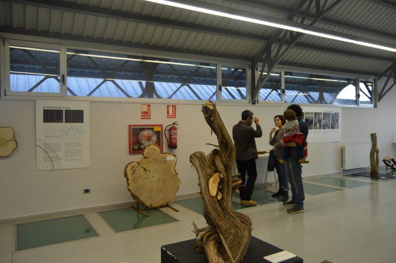 """Más de 200 estudiantes ya se han inscrito en las visitas guiadas a la exposición """"La memoria de los árboles"""", que se inauguró ayer"""