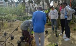 Plantación en el Parque del Encuentro
