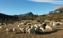 UAGA manifiesta su preocupación por la sequía en el Pirineo