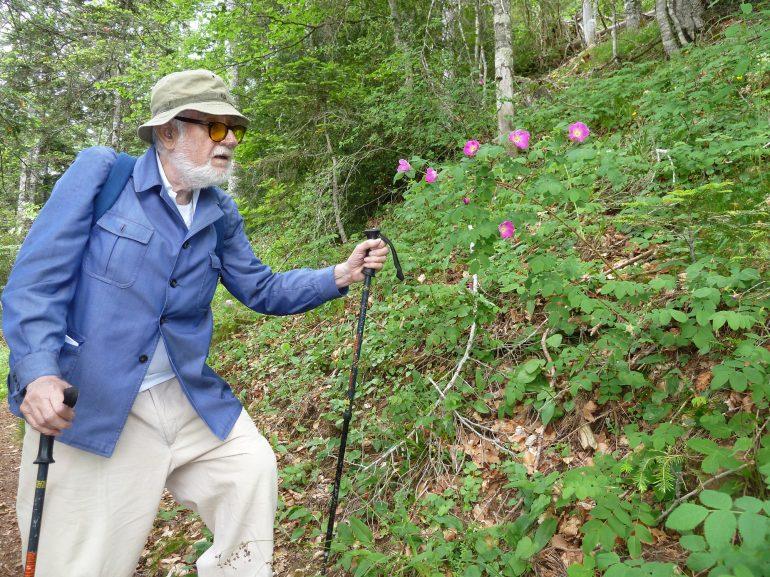 Homenaje en la DPH a Pedro Montserrat, el hombre que vivía para las plantas