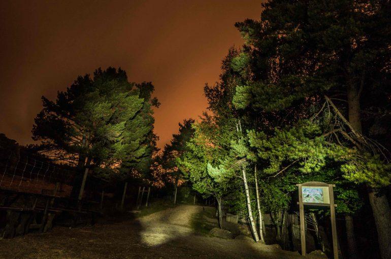 La visita nocturna a Lacuniacha una oportunidad única para conocer un Pirineo diferente
