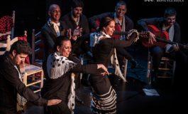 Coros Navideños contra los desahucios en Huesca