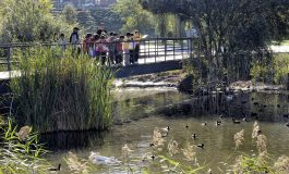 Más de 500 expertos de parques y jardines apostarán en Santander por la biodiversidad y las estructuras verdes como herramienta para crear espacios urbanos más habitables