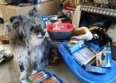 La protectora Animales sin Techo de Biescas recibe más de 300 kilos en productos Trixie