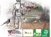 Paseo a pie semicircular por la Cañada Real a Nocito el 7 de abril, Día de las Vías Pecuarias