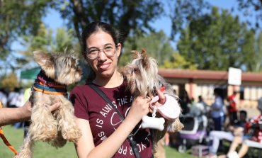 Un centenar de perros y cerca de 500 personas se han dado cita en el V Evento Canino de Brotalia