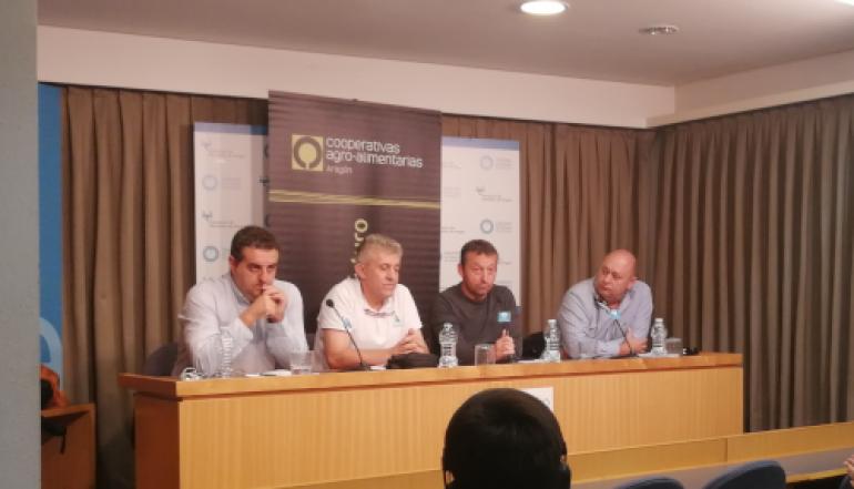 Las organizaciones agrarias aragonesas se unen para luchar contra los precios precarios del aceite de oliva