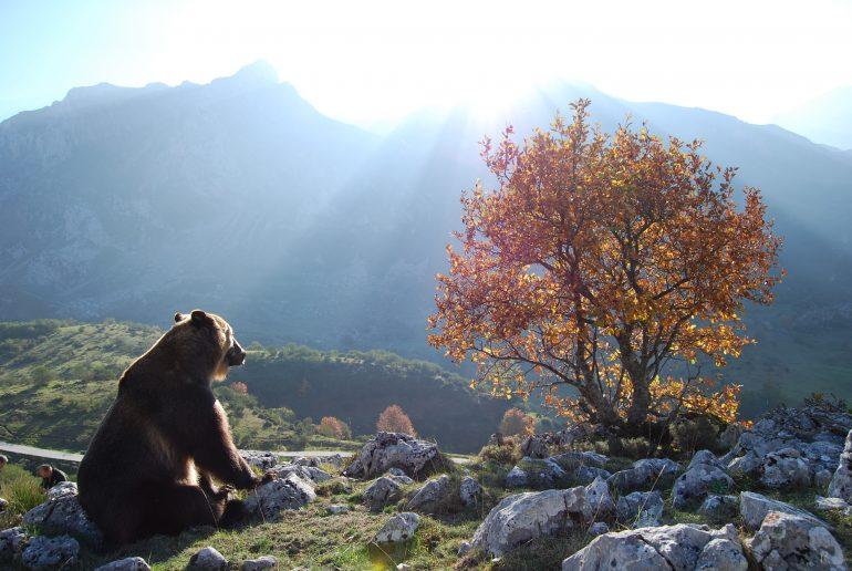 Semana del Pirineismo en Graus