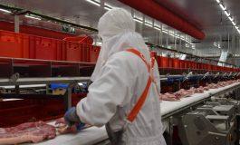 Primer curso de Bienestar Animal en el centro de formación Litera Meat