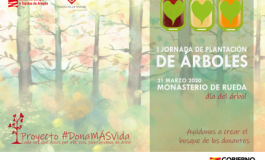 El Banco de Sangre y Tejidos de Aragón plantará un árbol por cada donación de aféresis
