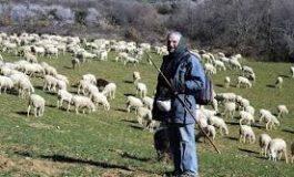Servicio de recogida de plásticos ganaderos en el Sobrarbe