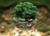 Productos de bajo consumo, una demanda que crece, favoreciendo al planeta y al bolsillo