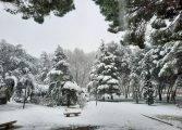 Compromiso X Fraga colaborará en la gestión del área de parques y jardines