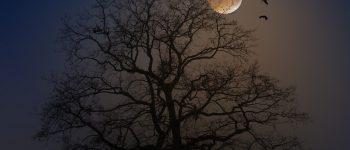 La luna, cómplice del Rey Sancho