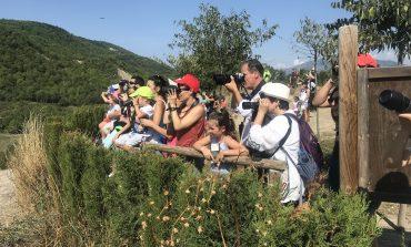 El ayuntamiento de Aínsa-Sobrarbe logra el Primer Premio de Buenas Prácticas Locales por la Biodiversidad