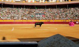 Tauroemoción seguirá al frente de Huesca en 2022